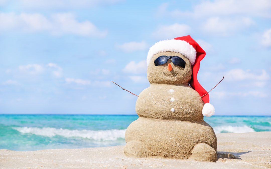Winter and Holiday Travel Tips